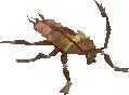 Cockroach Worker